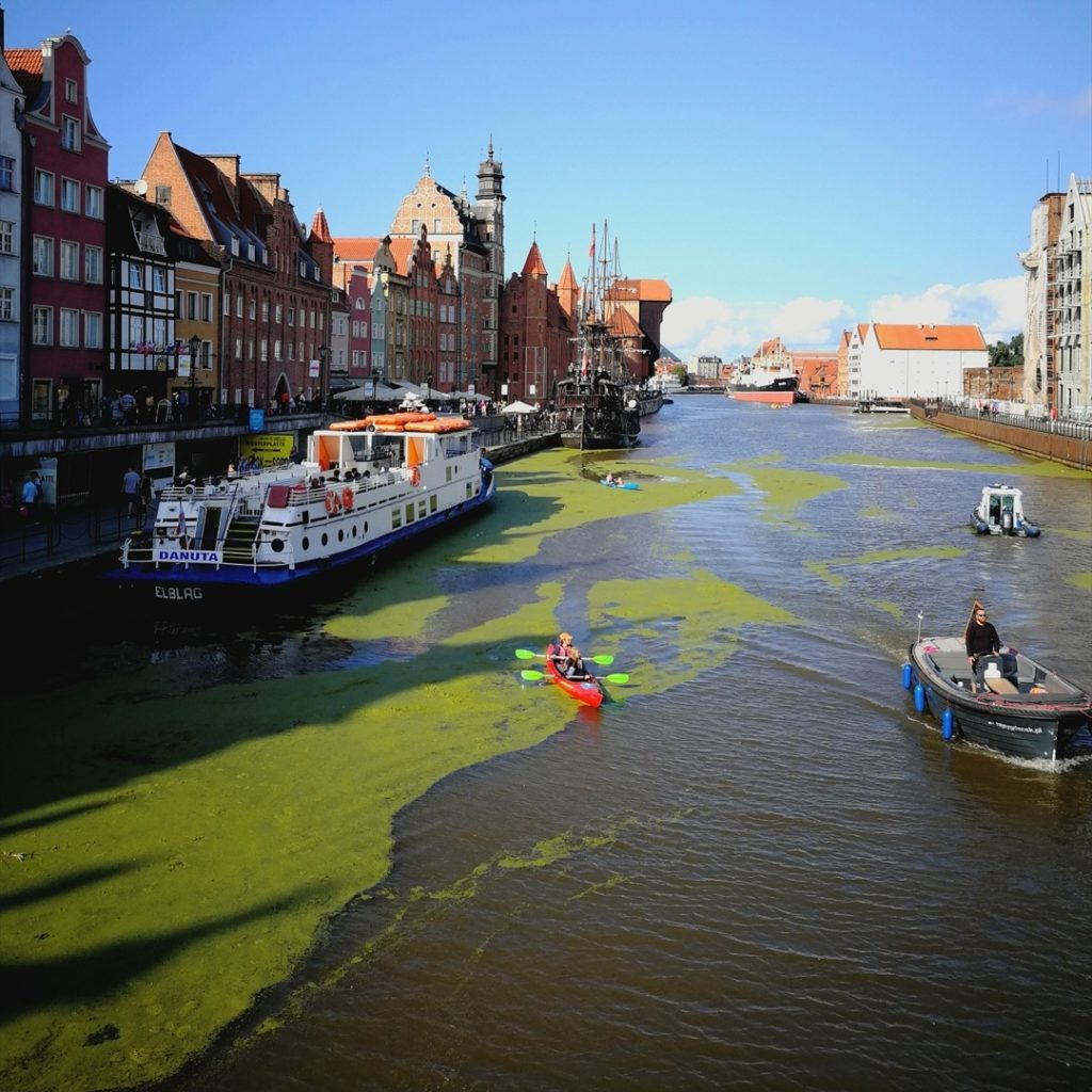 Free things to do in Gdansk - Ania Anna Kotula – www.tourguideservicegdansk.com